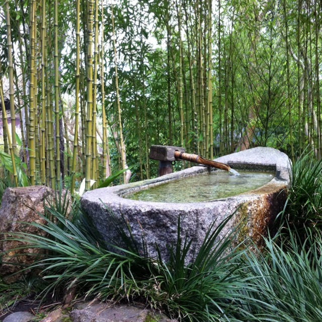 Japanese Garden Features Essay