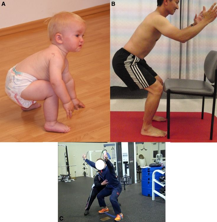 Deep squat position corresponding to 16 months of age.