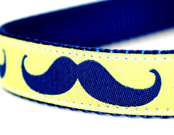 Mustache Dog Collar / Lime Yellow Blue Mustache / by daydogdesigns, $16.00