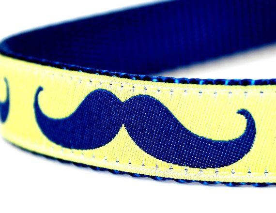 Mustache Dog Collar / Lime Yellow Blue Mustache / by daydogdesigns, $16.00