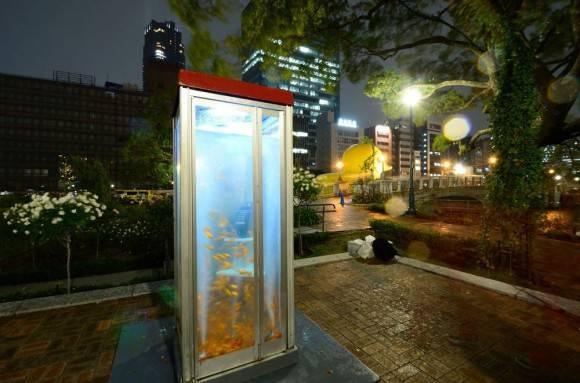 Τηλεφωνικοί θάλαμοι ενυδρεία... στην Ιαπωνία!