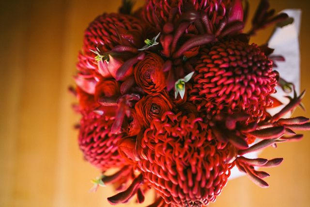gorgeous red waratah and kangaroo paw bouquet goodgraceandhumour.com