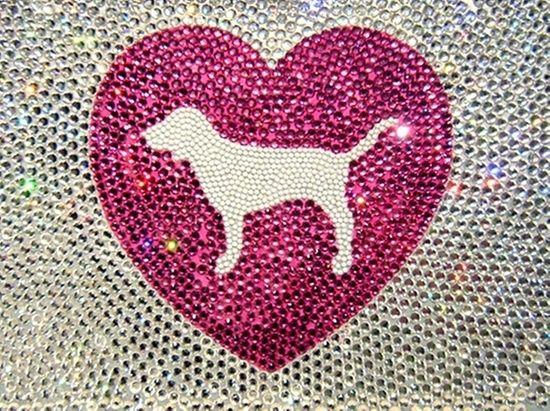 fashion-pink-victoria-secret-pink-vs-pink-dog-Favim.com-686511.jpg (550×411)