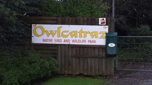 We dont have the rock. But we  have owlcatraz ...one more reason to live, work and play in manawatu #pnpersonnel #manawatu