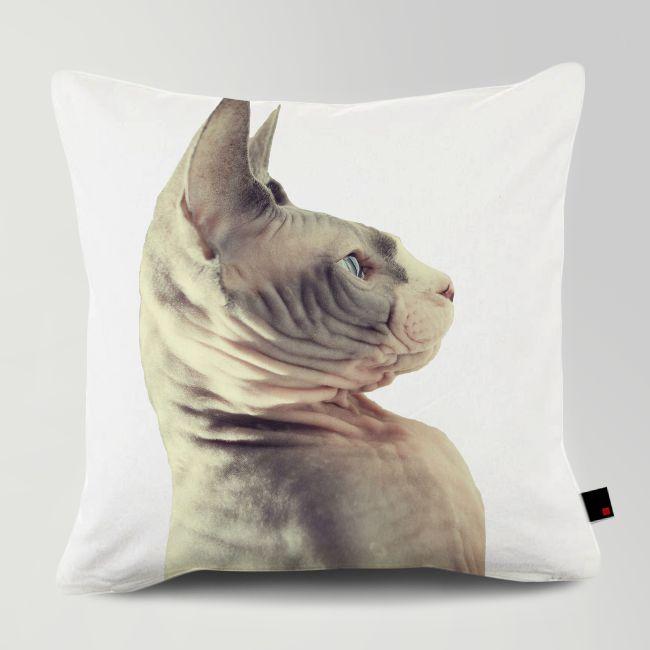 Customized Siamese Cat Cushion 주문제작 샴 쿠션 #홈데코 #데코 #쿠션 #고양이 #애견쿠션 #샴 #siamesecat www.OneRevolt.com