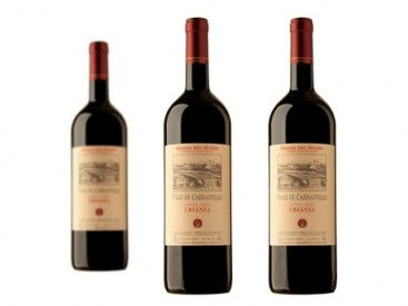 Tienes dos opciones. Pasar de largo, olvidarte de este vino, o quedártelo. Así que tú decides. Pago de Carraovejas Crianza 2010 (D.O. Ribera del Duero) - Pack de 3. #vino http://vino.mequedouno.com/