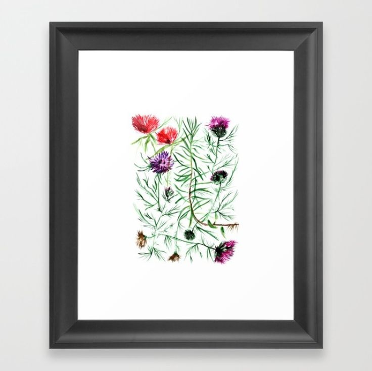 This illustration was created for the love of strong, sharp petals, immortal flowers. Thistles in vivid colors catch the eye with their all over entanglement.