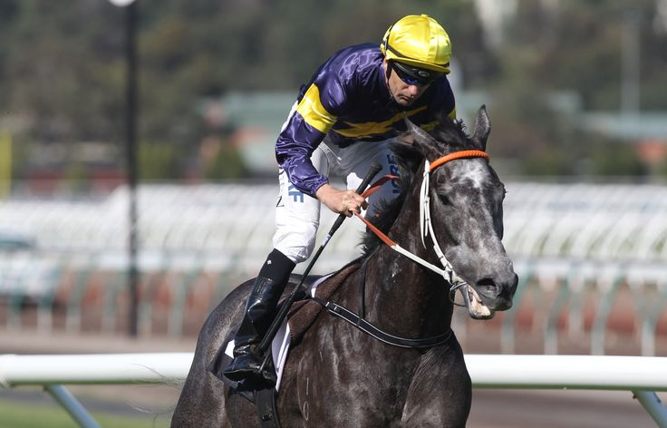 Chautauqua storms to victory in the Gilgai Stakes