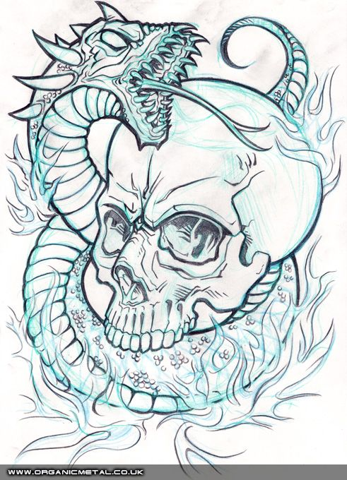 Skull Line Drawing Tattoo : Best ideas about sugar skull drawings on pinterest