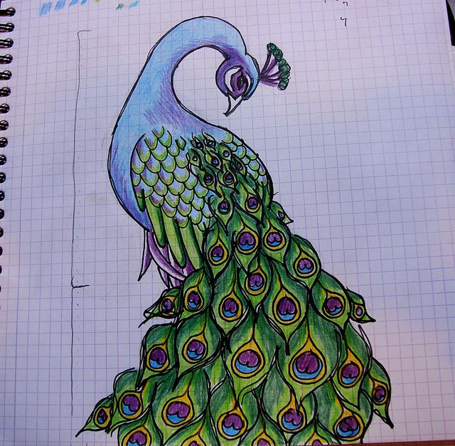 1000 images about peacock on pinterest stained glass for Pictures to draw on canvas