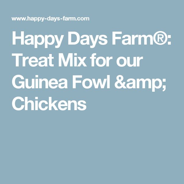 Happy Days Farm®: Treat Mix for our Guinea Fowl & Chickens