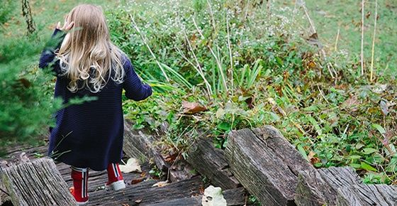 Детская афиша, 10 – 11 октября: «Англійські вихідні» в Green Country, Барабанный круг для детей, День Знаний в студии «Винахідник», Фотопроект «Осенние краски», «Цирк зажигает огни!», Детская филармония, Японский мастер-класс для детей, Мандалы в студии «Nickname», Family OPEN RUN DAY, Мастер-класс от «Art-you», «Ярмарка талантов», Осенний Бал с группой «Open Kids», «Footbik» для дошкольников, «Золоте курча». БараБука рекомендує