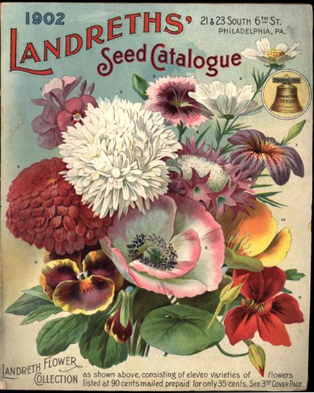 seed catalogue: Vintage Seeds Packets, Botanical Illustrations, Seeds Catalogue, Seed Packets, Seedpacket, Design Blog, Landreth Seeds, Flowers Seeds, Vintage Flowers