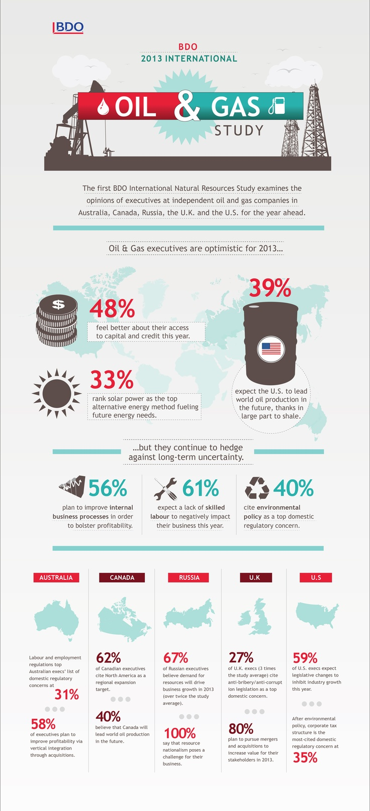 BDO 2013 International Oil & Gas Study #infographic