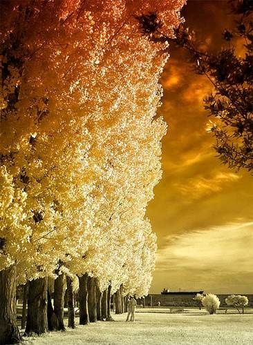GREECE CHANNEL   Thessaloniki Paralia Park, Macedonia, Greece