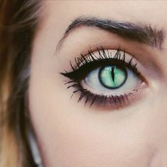 cat eye contacts - Google Search
