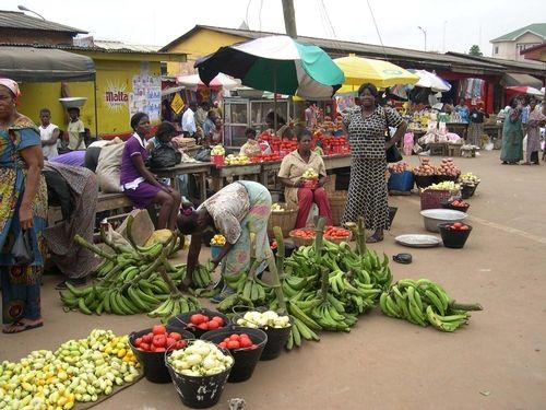 Low food production to match rising population sparks fears of insecurity: Nigeria's population is rising rapidly but food production is…