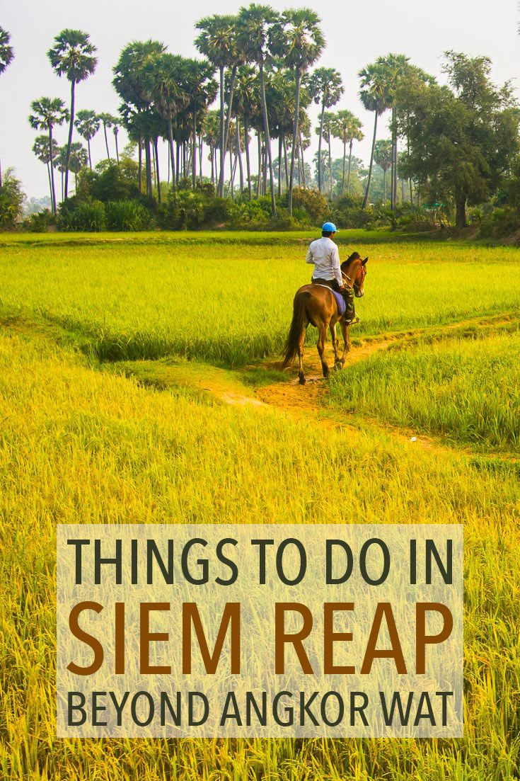 Angkor Wat isn't the only reason to visit Siem Reap, Cambodia. Find out what else there is to do (and eat) beyond the temples.