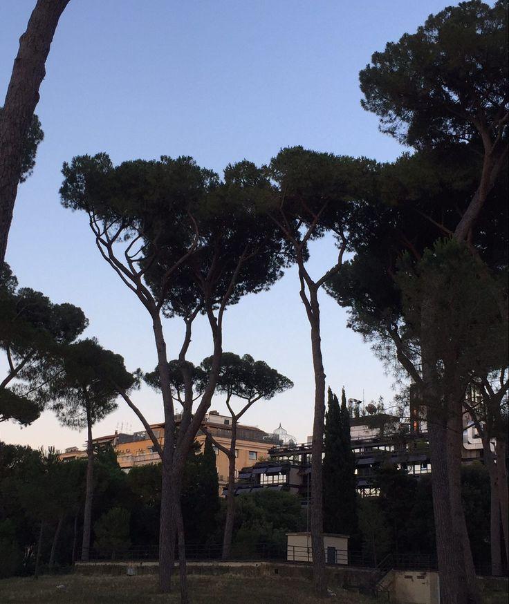 Shakespeare a italiana – Luxo e viagens