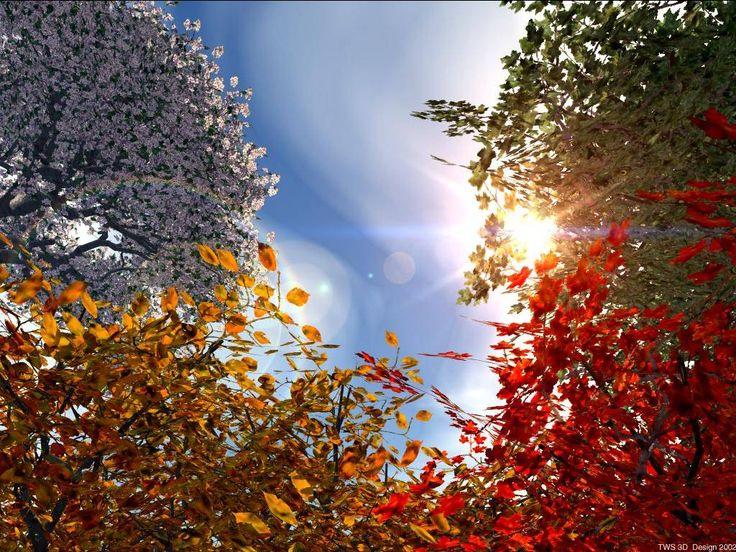 Il mio #Buongiorno inizia con un filo di #speranza solo un filo eh.. se no ci resterei troppo male
