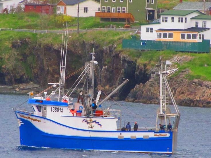 Portugal Cove Newfoundland