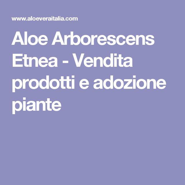 Aloe Arborescens Etnea - Vendita prodotti e adozione piante