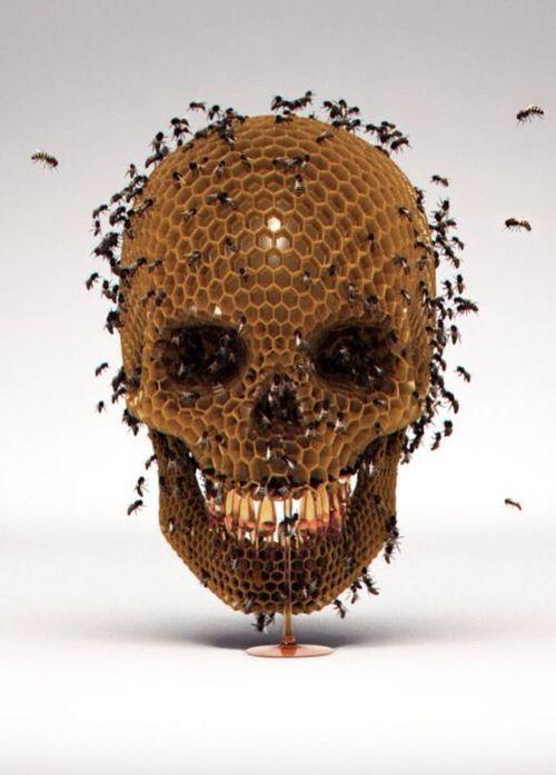 Skull Hive by Luke Dwyer