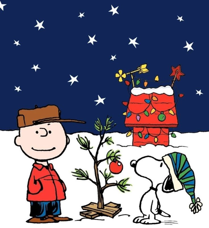 119 best SNOOPY & FRIENDS CELEBRATE CHRISTMAS images on Pinterest ...