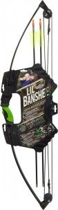Lil Banshee Youth Bow Review and Specs #archery #youthbow