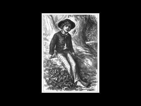 Mark Twain - Dobrodružství Toma Sawyera (Mluvené slovo SK) - YouTube