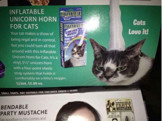 Fotos Engraçadas 16 - (Chifre de unicórnio inflável para gatos. - Gatos adoram isso!)  Olha como esse gato da foto adora ter isso na cabeça.