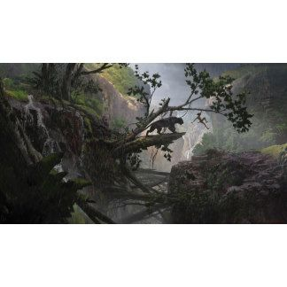 A dzsungel könyve - Mystery of the Jungle
