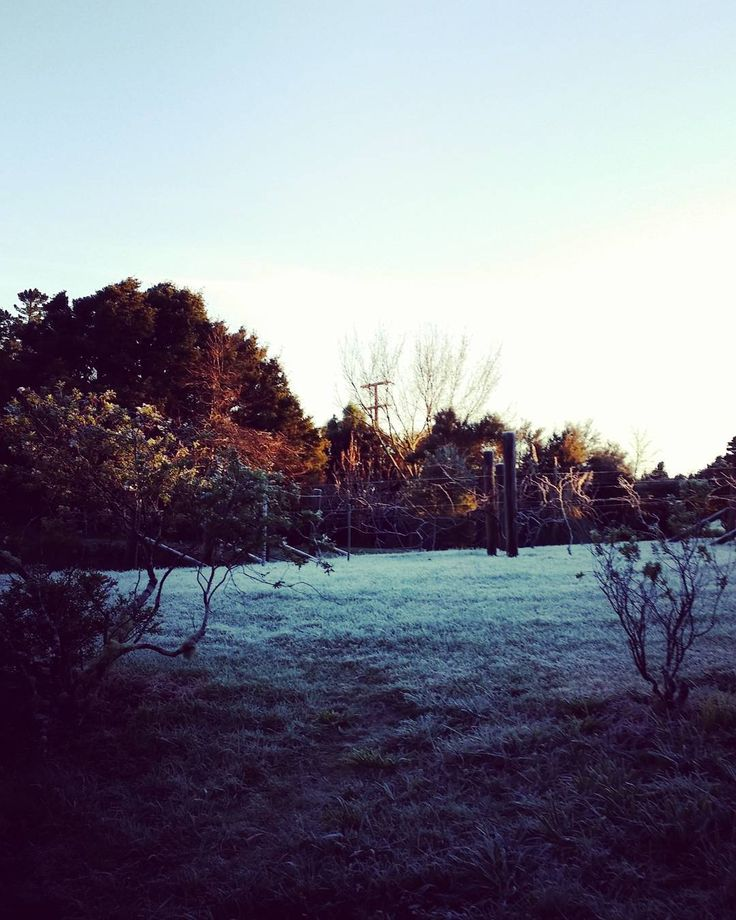 A frosty morning #winter #countryside  #newzealand