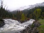 Little Salmon River, Idaho Fly Fishing Reports & Conditions