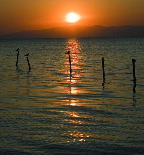 İznik Gölü - Bursa.com.tr | Marmara Bölgesi'nin en büyük, Türkiye'nin ise beşinci büyük doğal gölü olan İznik Gölü, derinliği en fazla 80 m. olan tektonik bir tatlı su gölüdür. Göl bütünüyle tarım alanları ve zeytinliklerle çevrilidir. Alan, sık sazlıkların arasında karışık koloniler kuran küçük karabatak  (30 çift) ve gece balıkçılı (250 çift) ile özel çevre koruma alanı ölçütlerine uyar. İznik Gölü 1990 yılında SİT alanı ilan edilmiştir.