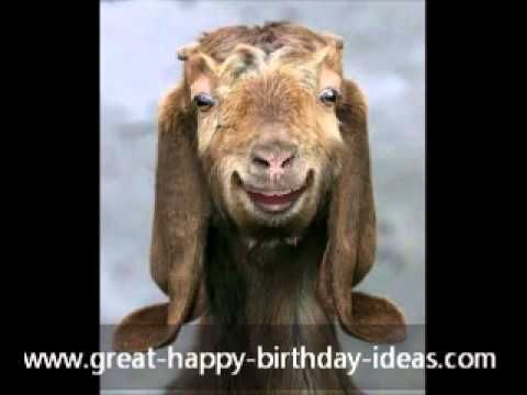 Happy Birthday Card from an Old Goat - YouTube