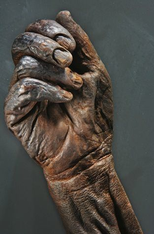 Lindow Man oder Old-Croghan Man - Hand of a bog body http://25.media.tumblr.com
