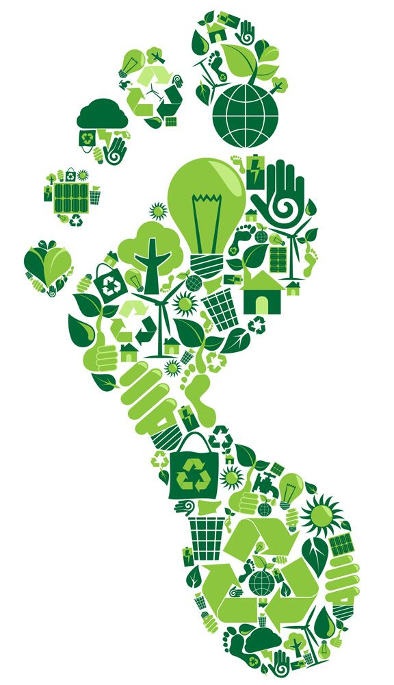 How much are you wasting? Calculate you're personal carbon footprint by entering basic information into our calculator.