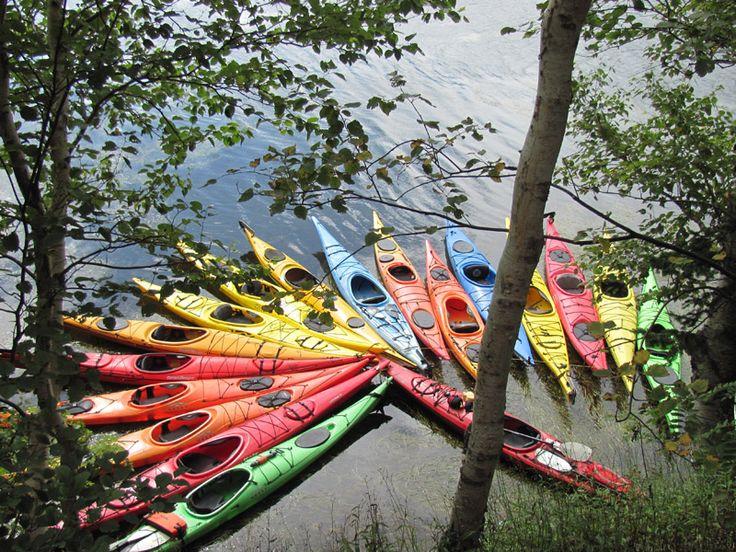 Gallery   North River Kayak Tours - Cape Breton Island, Nova Scotia, Canada