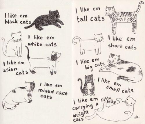 meowBig Cat, Kitty Cat, Calvin Harry, Kitty Kitty, Catsi Adorable, Cat Cat, Black Cat, Ems Cat, Cat Lady