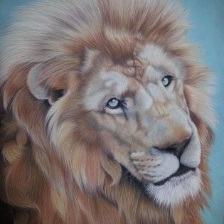 Janet Thatcher, nature artist. The snow lion is rendered in pastel on velour paper and measures of a metre tall.