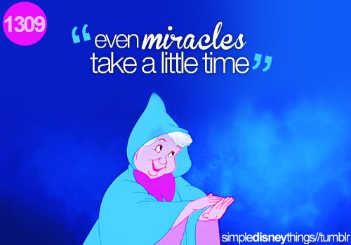 Sometimes Disney still gives the best advice...: Time, Miracles, Inspiration, Quotes, Fairygodmother, Fairy Godmother, So True, Things Disney, Cinderella