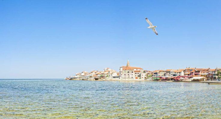 Frühbucher Angebot für die ganze Familie: Verbringt 8 oder 15 Tage an der sonnigen Küste Istriens! 8 oder 15 Tage ab 179 € | Urlaubsheld