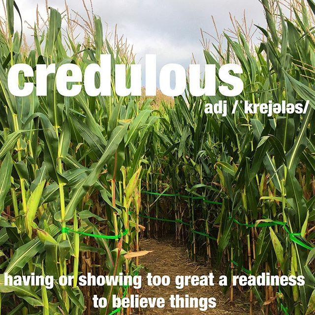 The Credulous Boy Believed The Guides When They Said The Corn Maze Would Take Hours To Complete Autumn Cornmaze F Cool Words Word Definitions Unusual Words