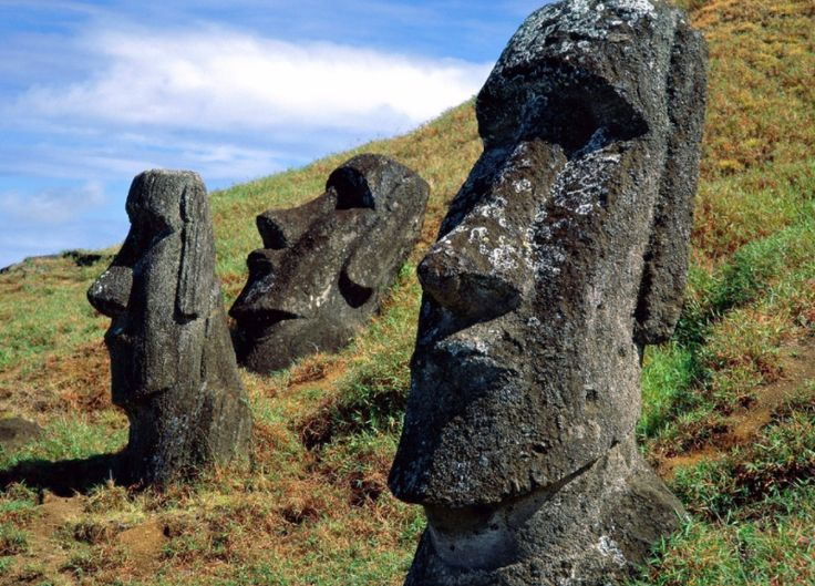 """Aging is an Evolutionary Oversight"" --Institute of Molecular Biology 9/16/17 Moai Statues Rano Raraku Easter Island Chile"