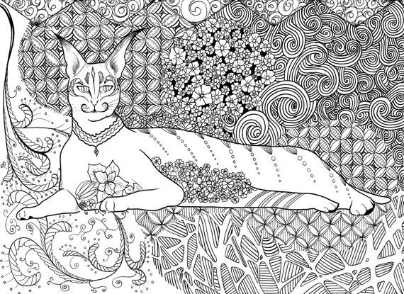 465 best Just cats coloring 2 images on Pinterest  Coloring