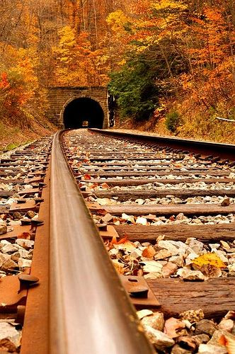 """If you do not see light at the end of the tunnel, consider it an opportunity to create an opening yourself, wherever you want."" ~Ashton Kallarakkal. Photo by jagger1970/flickr: Old railroad tunnel"