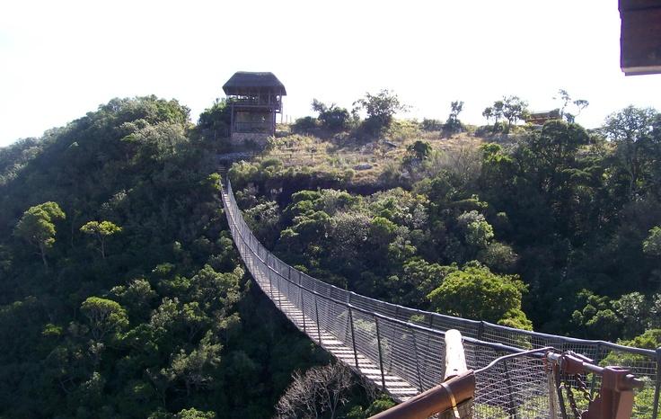 Hangbrug Oribi Gorge Kwazulu Natal SA