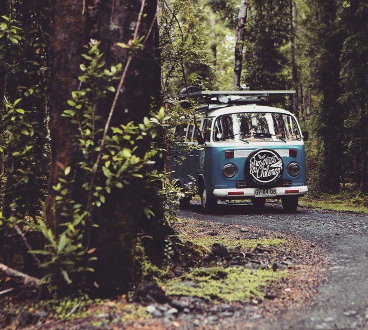 """nosotroslosviajeros: """"Cada sueño comienza con un soñador y cada aventura comienza con un aventurero sólo tienes que decir que sí.  Resolución del nuevo año: decir más que si!! Foto: Parque Pumalín."""""""