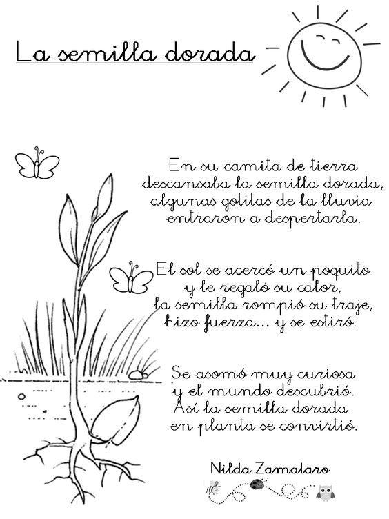 Poema - La semilla dorada, de Nilda Zamataro. Descarga el texto.:
